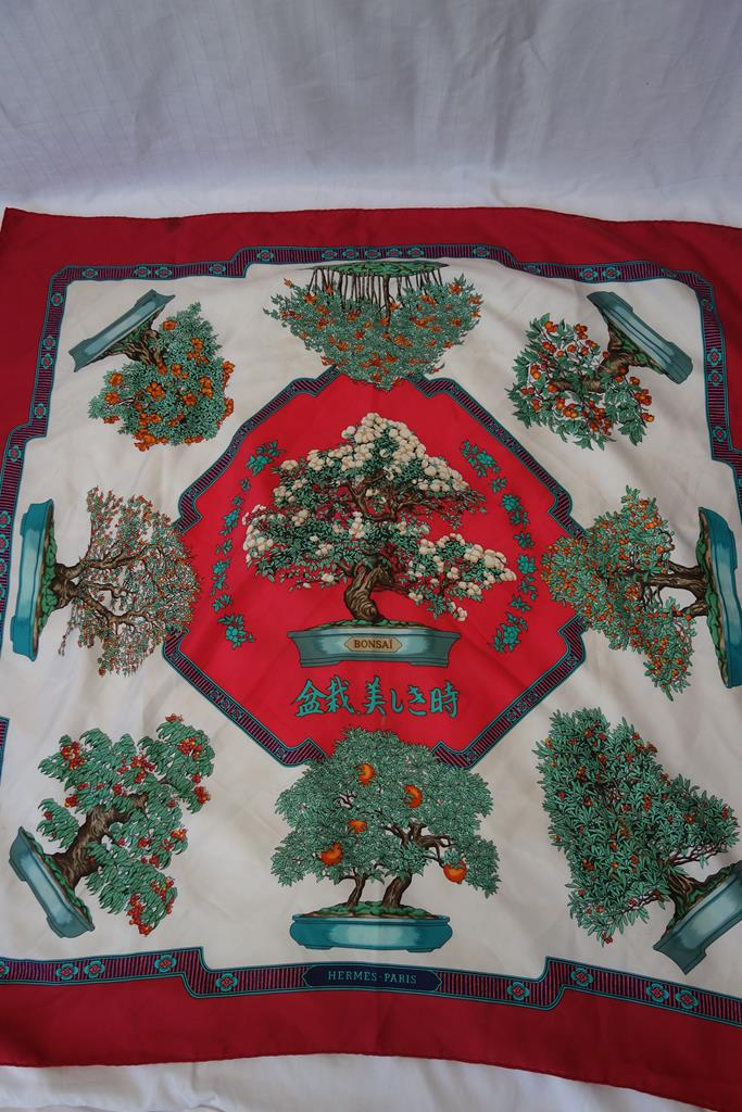 Hermes scarf designed by Catherine Baschet at Michelo Haak Lifestyle DSC01469