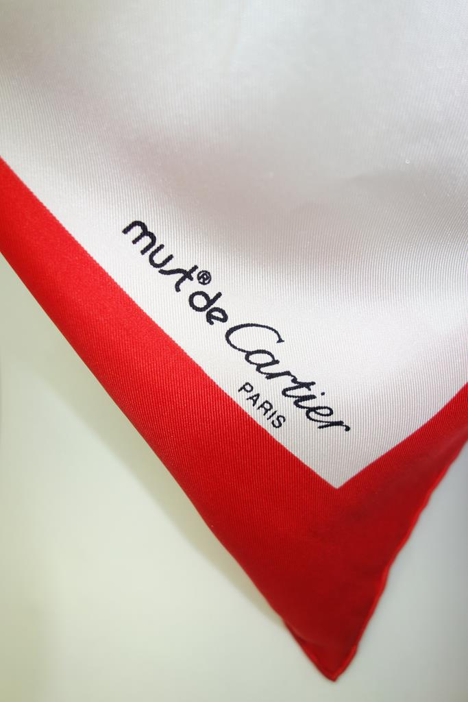 Must de Cartier scarf at Michelo Haak Lifestyle DSC01493